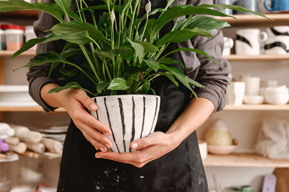 Pottery Trend Report: Cool & Unique Plant Pots For 2021