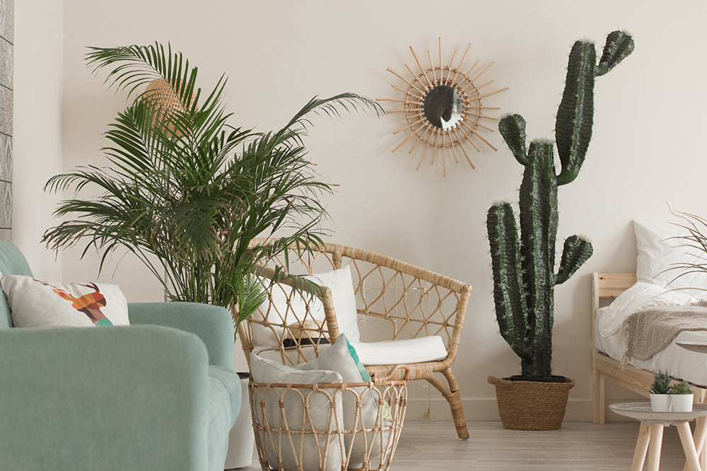 decorating with houseplants boho interior plant decor shop