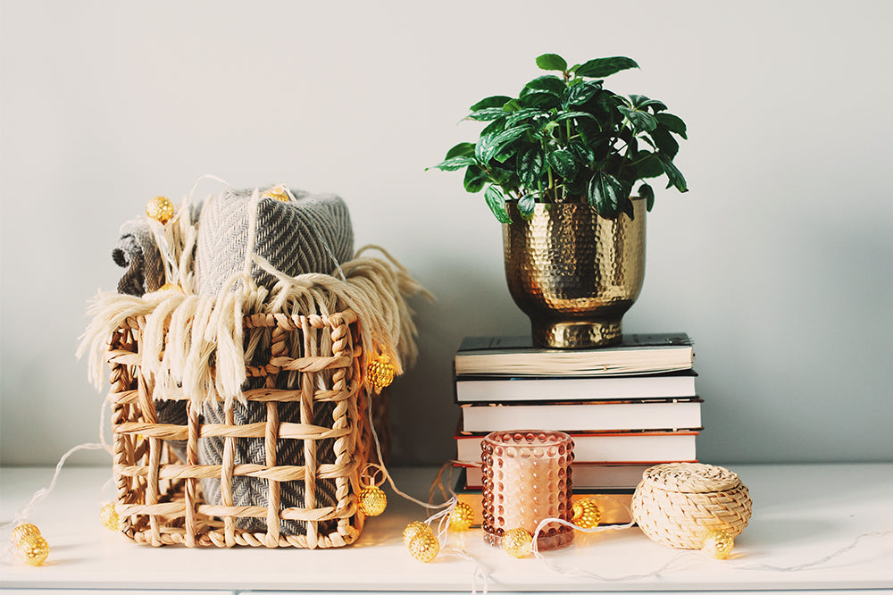 How to Integrate Plants Into Your Holiday Decor