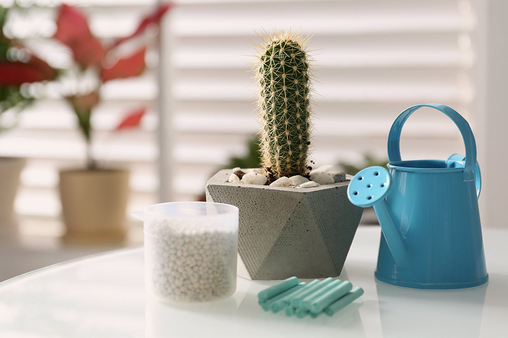 cactus with watering can and fertilizer
