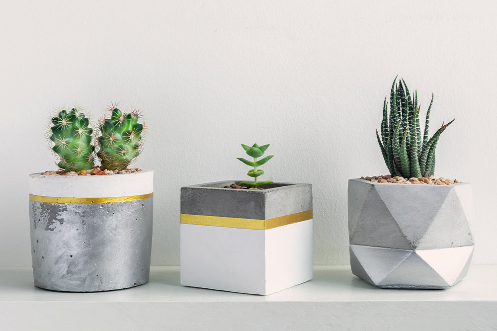 gray and yellow concrete planters