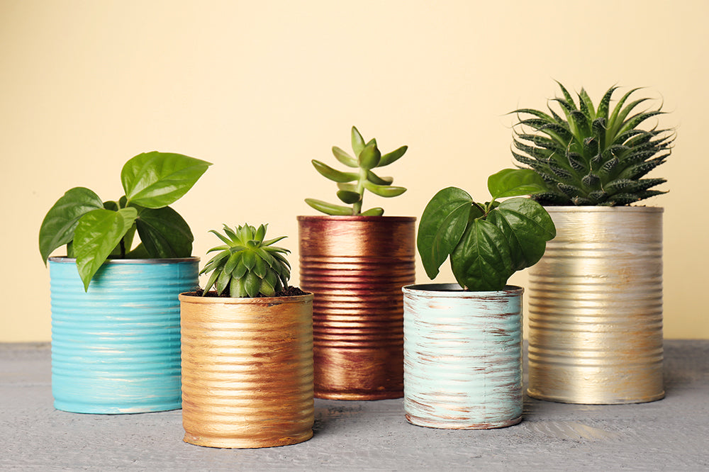 recycled old tin cans