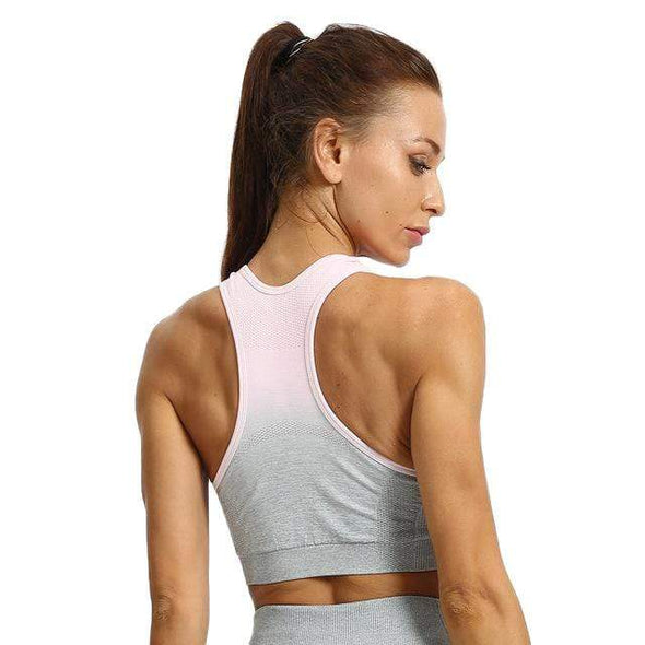 Vibe Fit GrayPink Bra / S Gradient Sports Bra