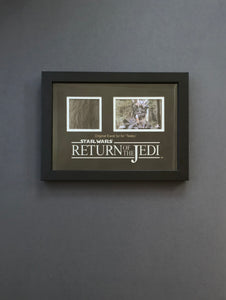 Star Wars: Return of the Jedi (1983) - A Teebo Ewok Fur Display (SOLD)