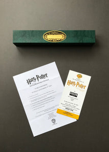 Harry Potter & The Philosopher's Stone (2001) - Ollivanders Wand Box