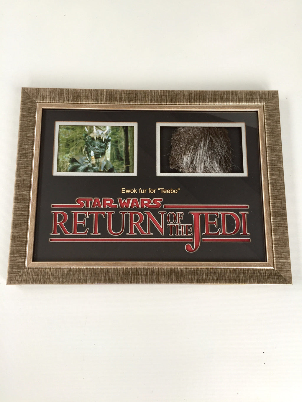 Star Wars Episode VI: Return of the Jedi (1981) Teebo Ewok Fur Display - RESERVED