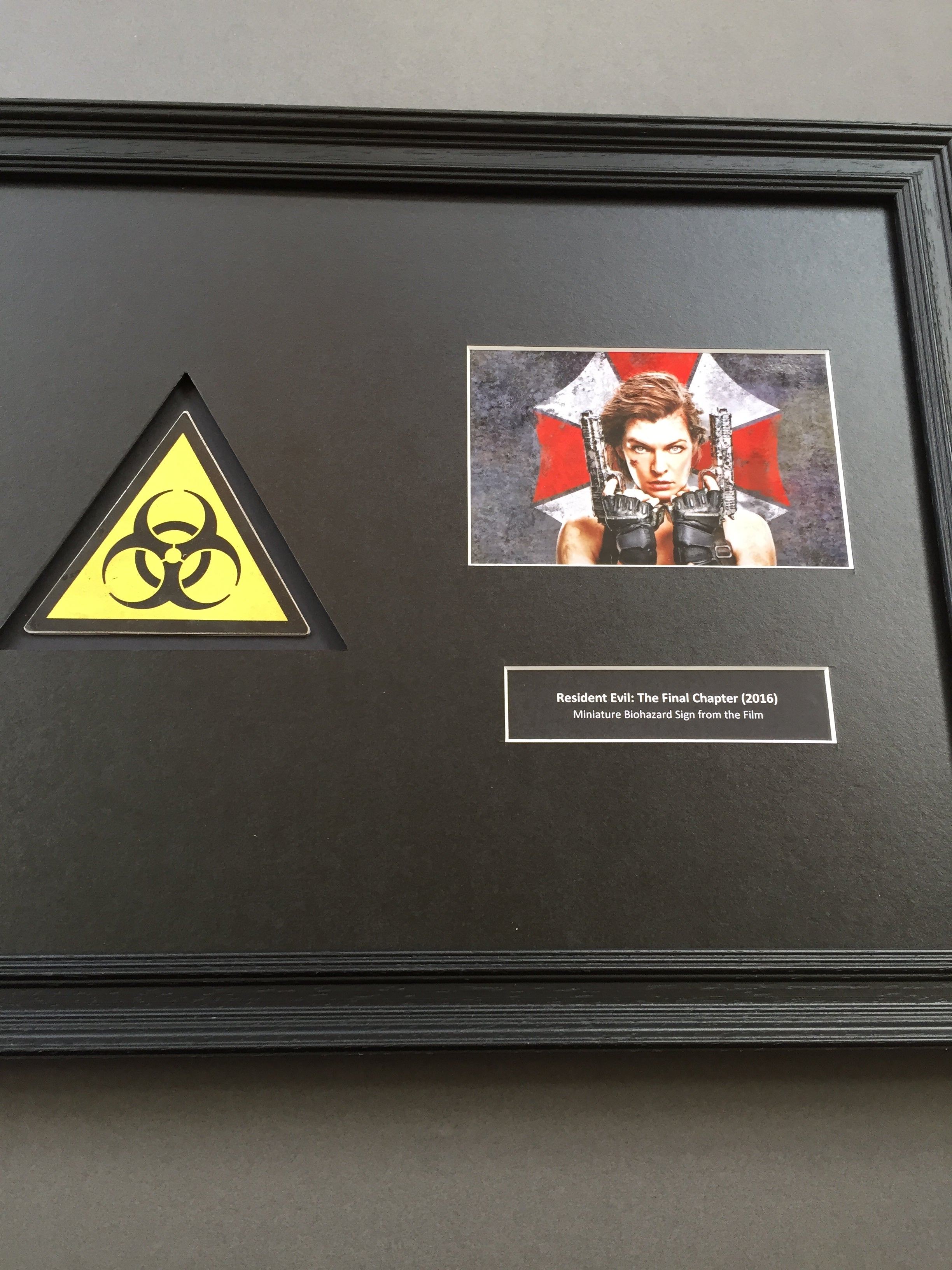 Resident Evil: The Final Chapter (2016) - Framed Biohazard Sign