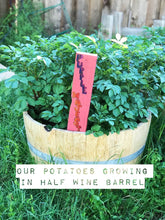 Load image into Gallery viewer, Half Wine Barrel Planters