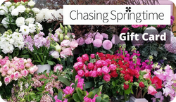 Chasing Springtime Gift Card