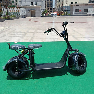 Electric Scooter Motorcycle