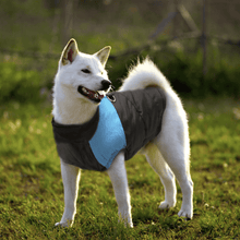 Dog Winter Jacket (Warm + Waterproof)