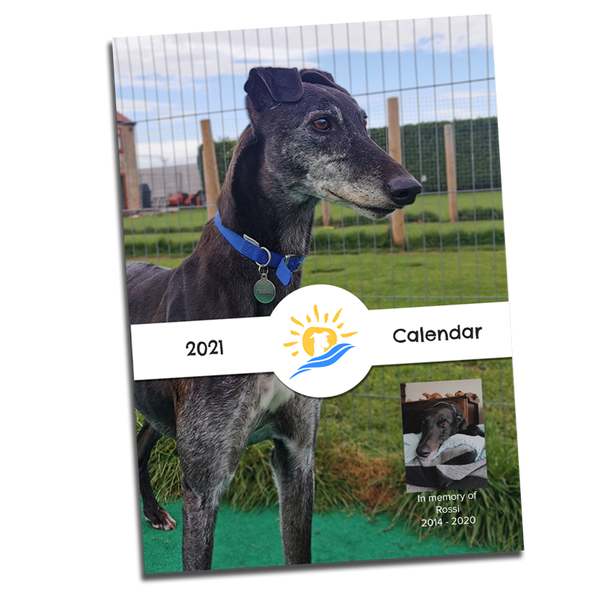 2021 Charity Calendar by Seaside Greyhounds - Seaside Greyhounds Store