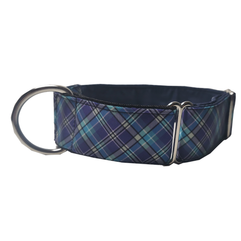 Blue Check Martingale Collar