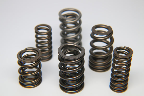 Ferrea 1.225in to 1.570in Dia 0.925/1.24 OD 0.66/0.915 ID Dual w/Damper Valve Spring - Set of 16