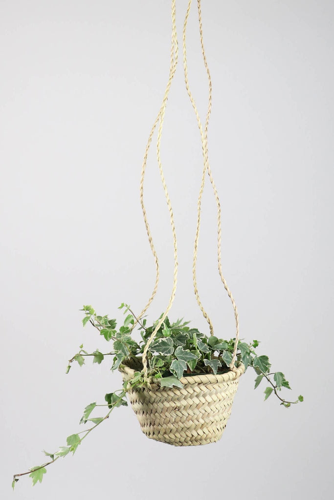 Everglades Straw Plant Hanger - Pixelated Boutique