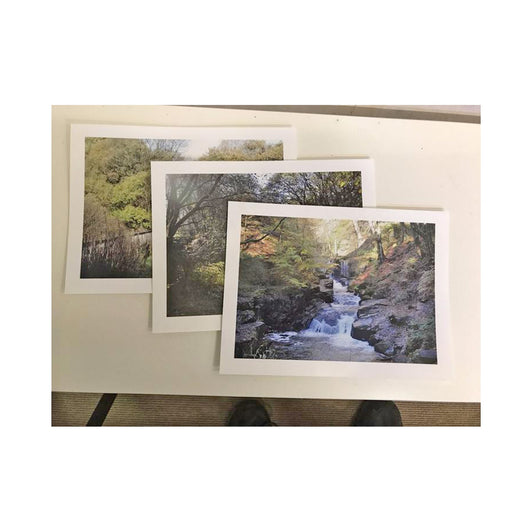7 x 5 inch photo prints - whitworthprints