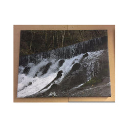 Rectangle Canvas 10 x 14 Inch - whitworthprints