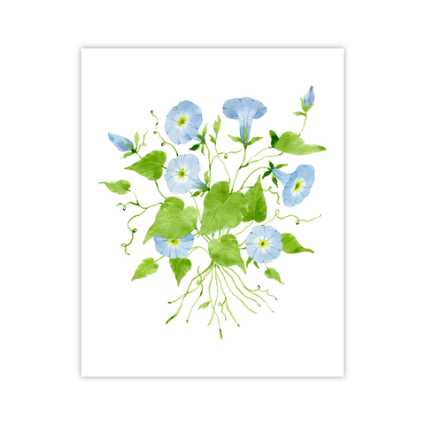 Morning Glory Print | Botanical Bouquets
