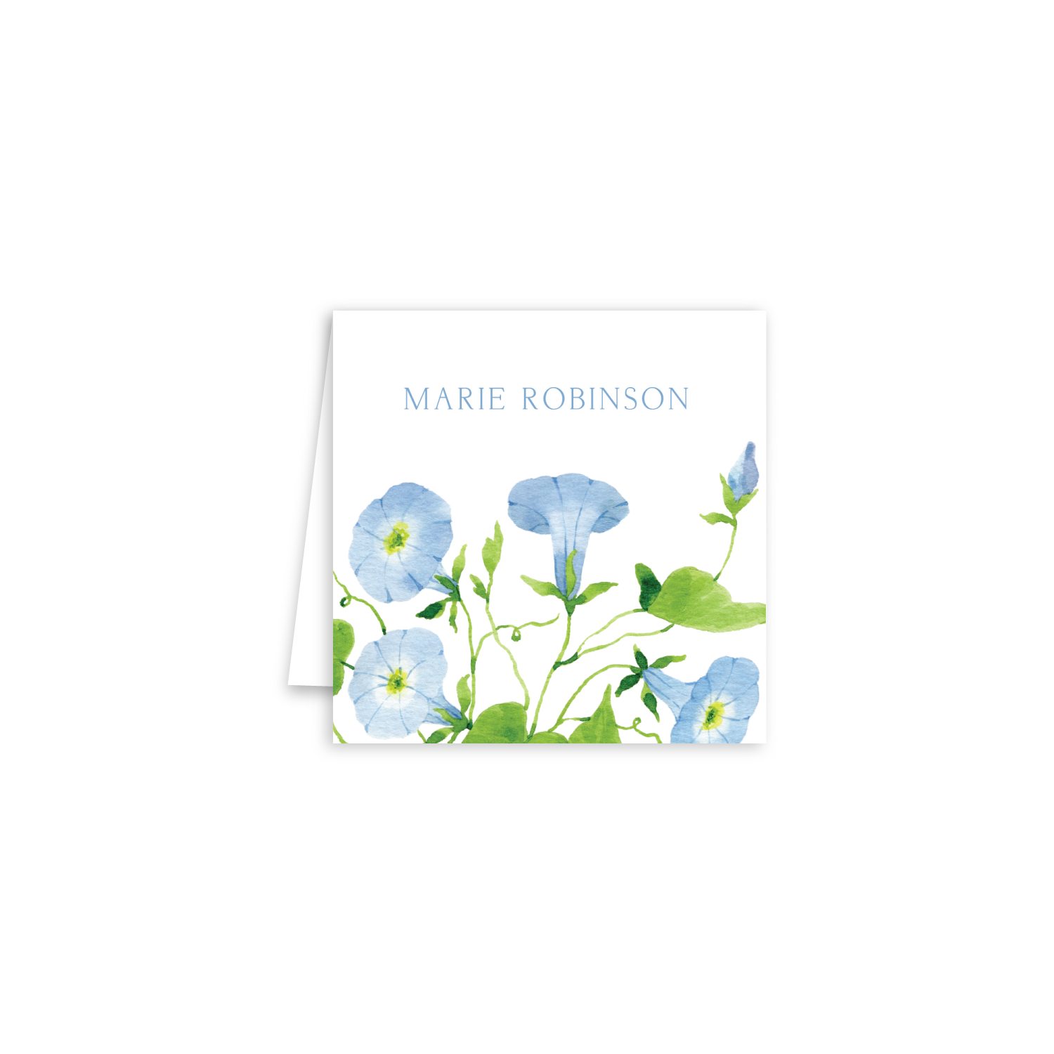 Morning Glory Enclosure Cards | Botanical Bouquets
