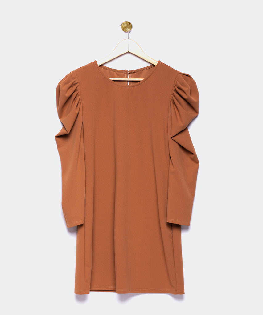 Brown dress with gigot sleeve
