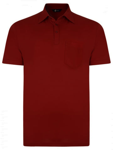 Gabicci Short Sleeve Cotton Blend Polo in Currant