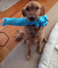 Load image into Gallery viewer, MultiPet Loofa Dog Toy