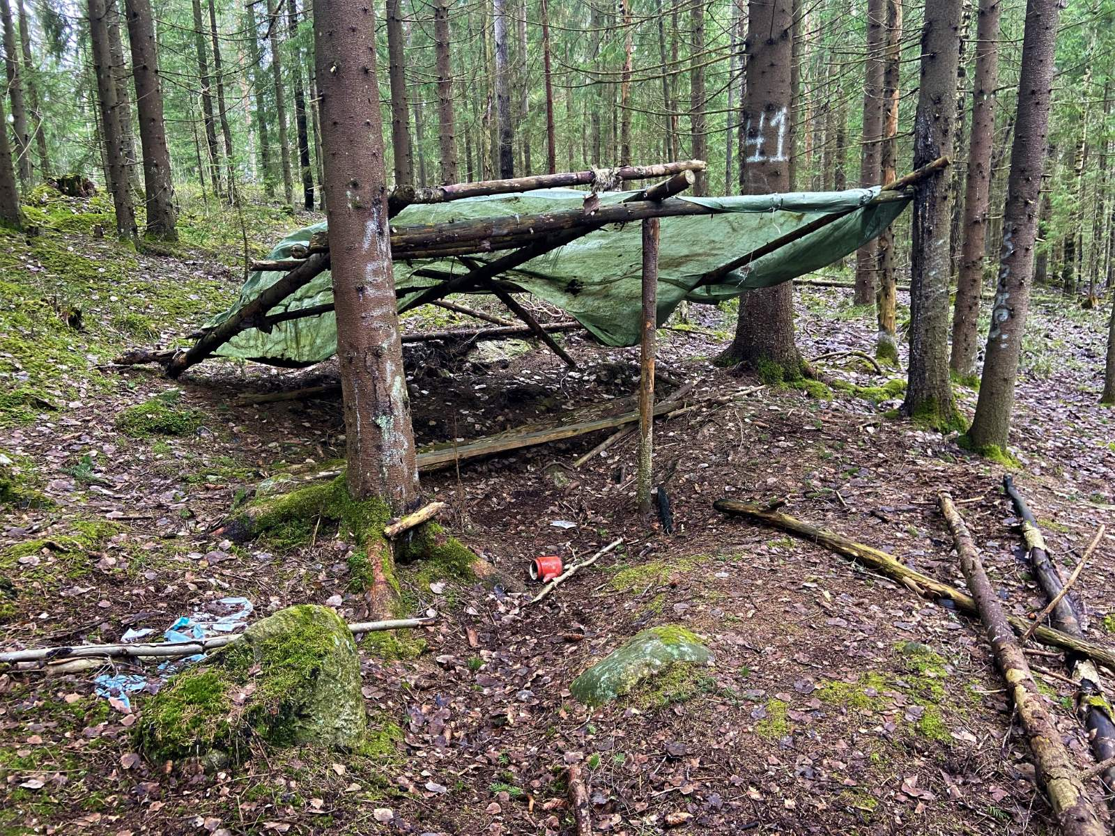 A makeshift green tarp tent in the woods with the number 41 painted a tree behind it