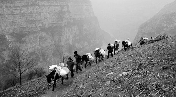 TEA HORSE ROAD FROM PU-ERH TO TIBET
