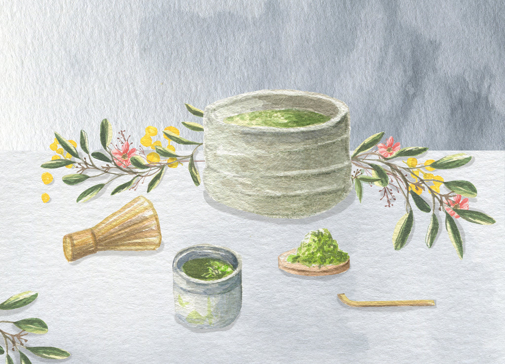 Watercolor painting of matcha by Anna Fedorovich for P & T