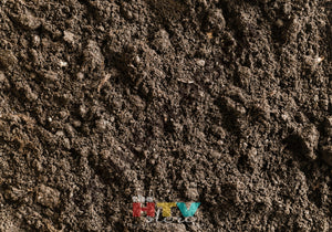 Dirt Photo Htv 12 X 17