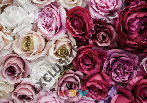 Ombre Roses Pink Large Photo Htv 12 X 17