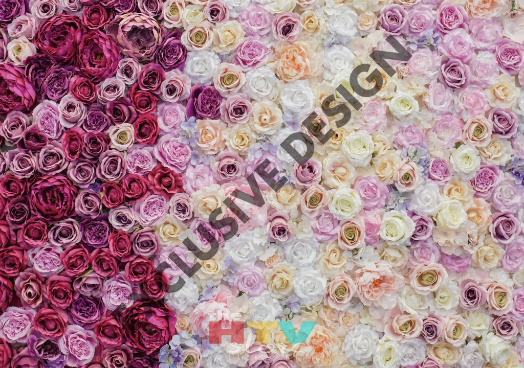 Ombre Roses Pink Photo Htv 12 X 17