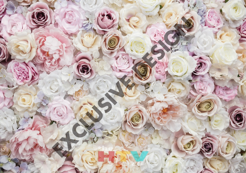 White And Light Pink Roses Photo Htv 12 X 17