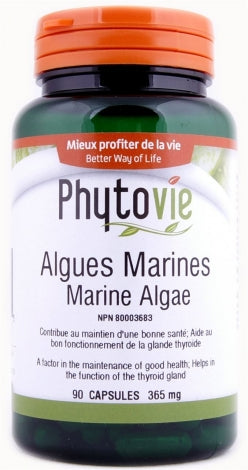 Marine Algae - Phytovie