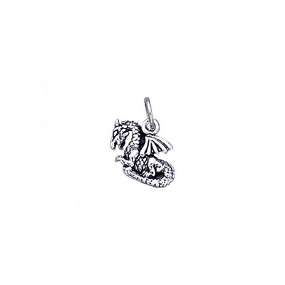 Dragon Silver Charm TC728