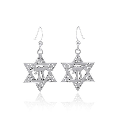 Chai Star of David Earrings TER1557
