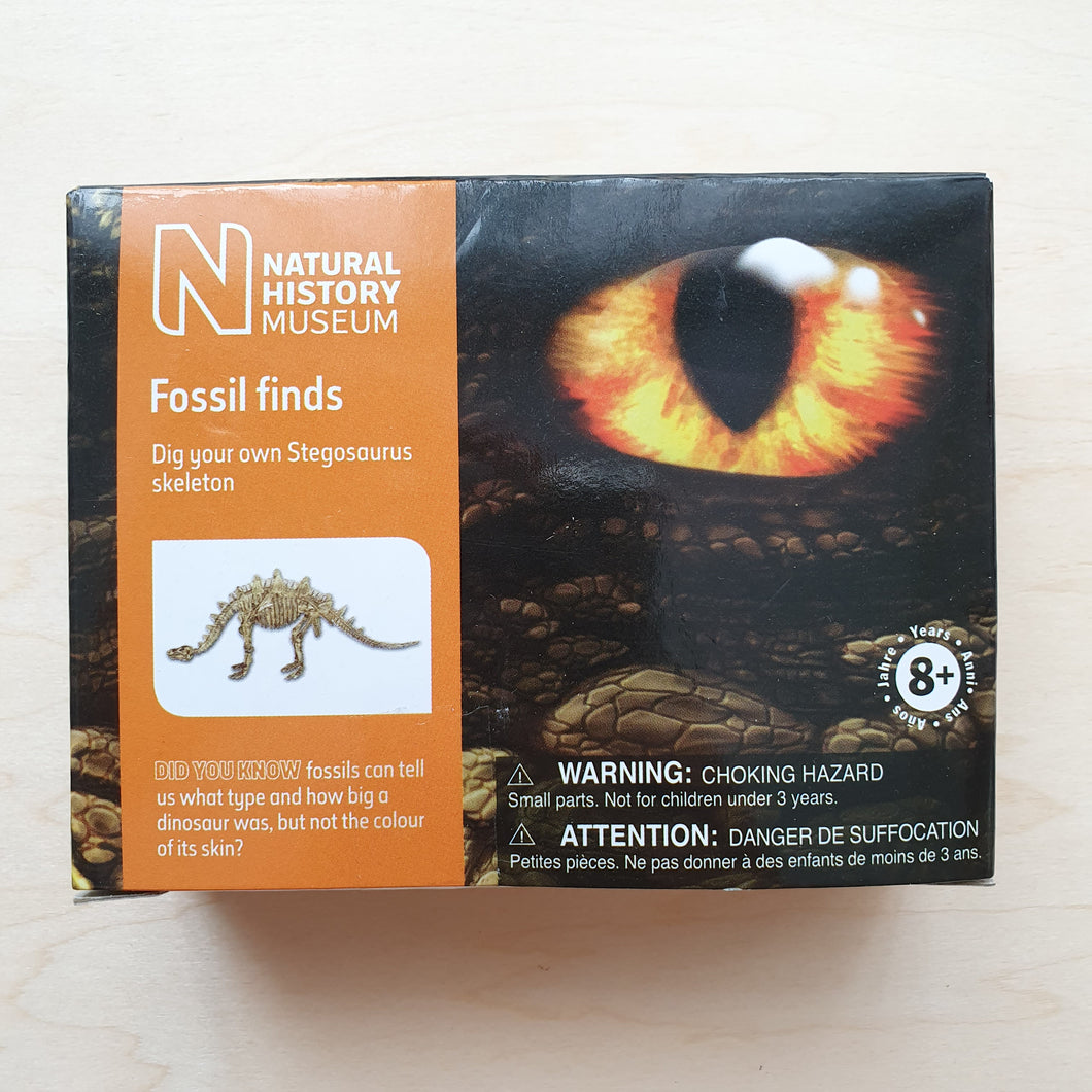 Fossil Finds Kit