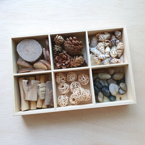 Nature's Treasures With Box
