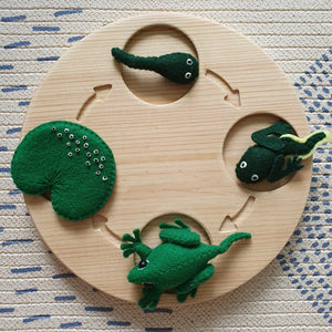 Life Cycles Felt Set (Butterfly, Turtle, Frog, Bean)
