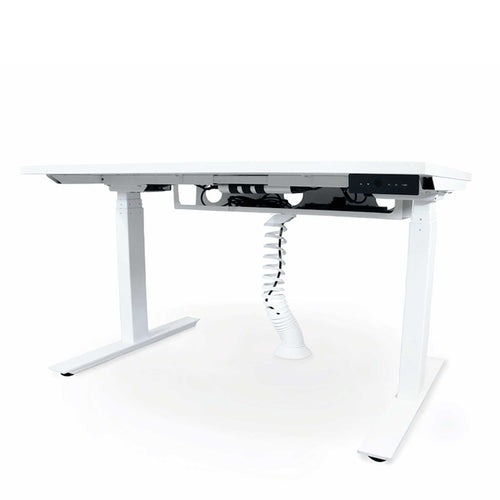 Autonomy Pro Dual Motor Electric Sit/Stand Single Desk with Cable Management - Standard Size