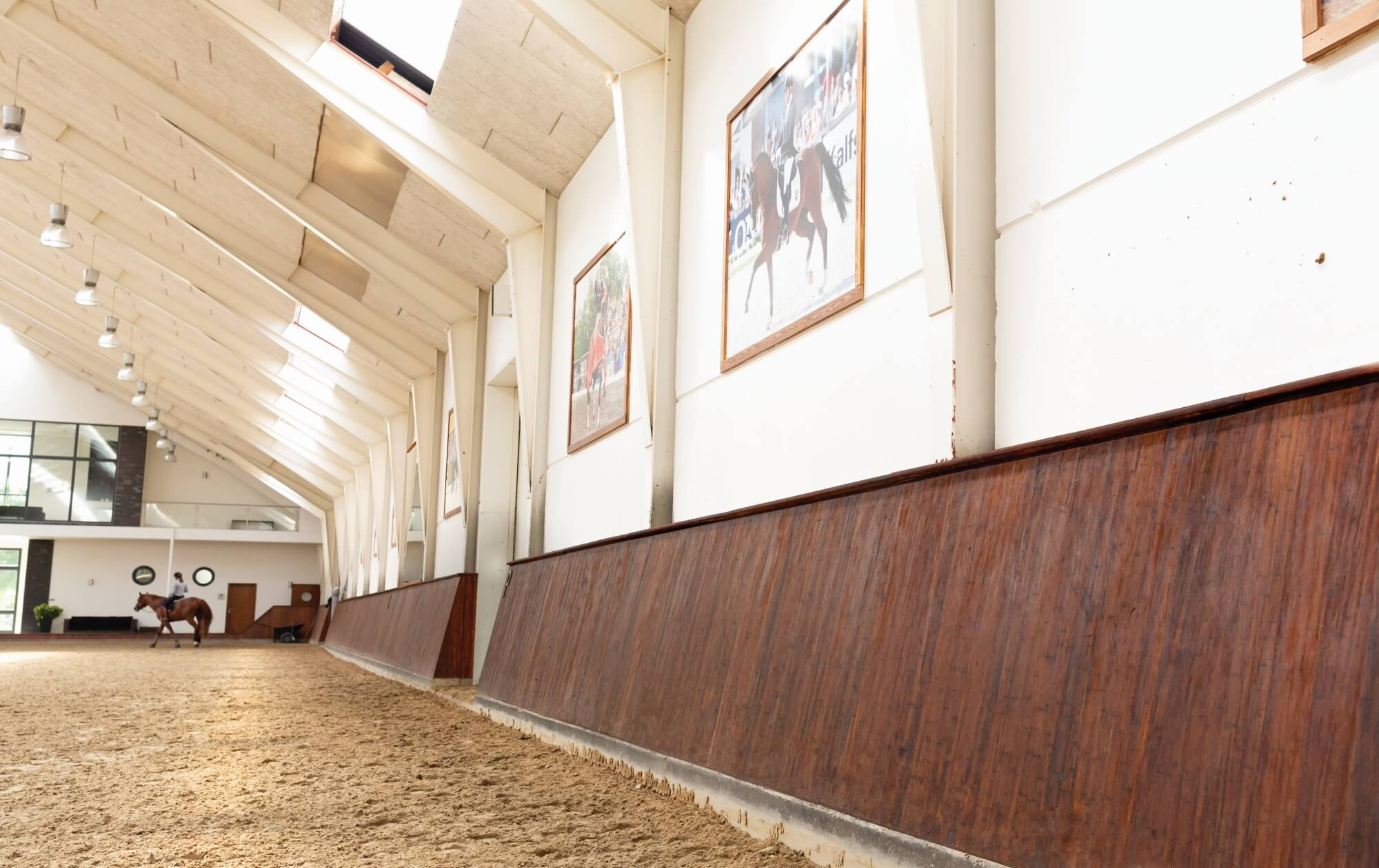 Horse arena with plant-based wood finish on barriers.