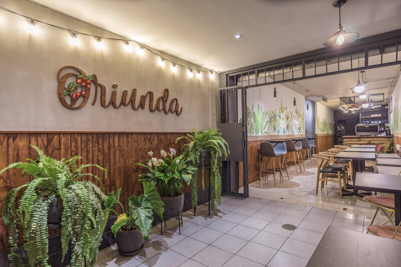 The entrance to Oriunda coffee shop is lined with green plants.