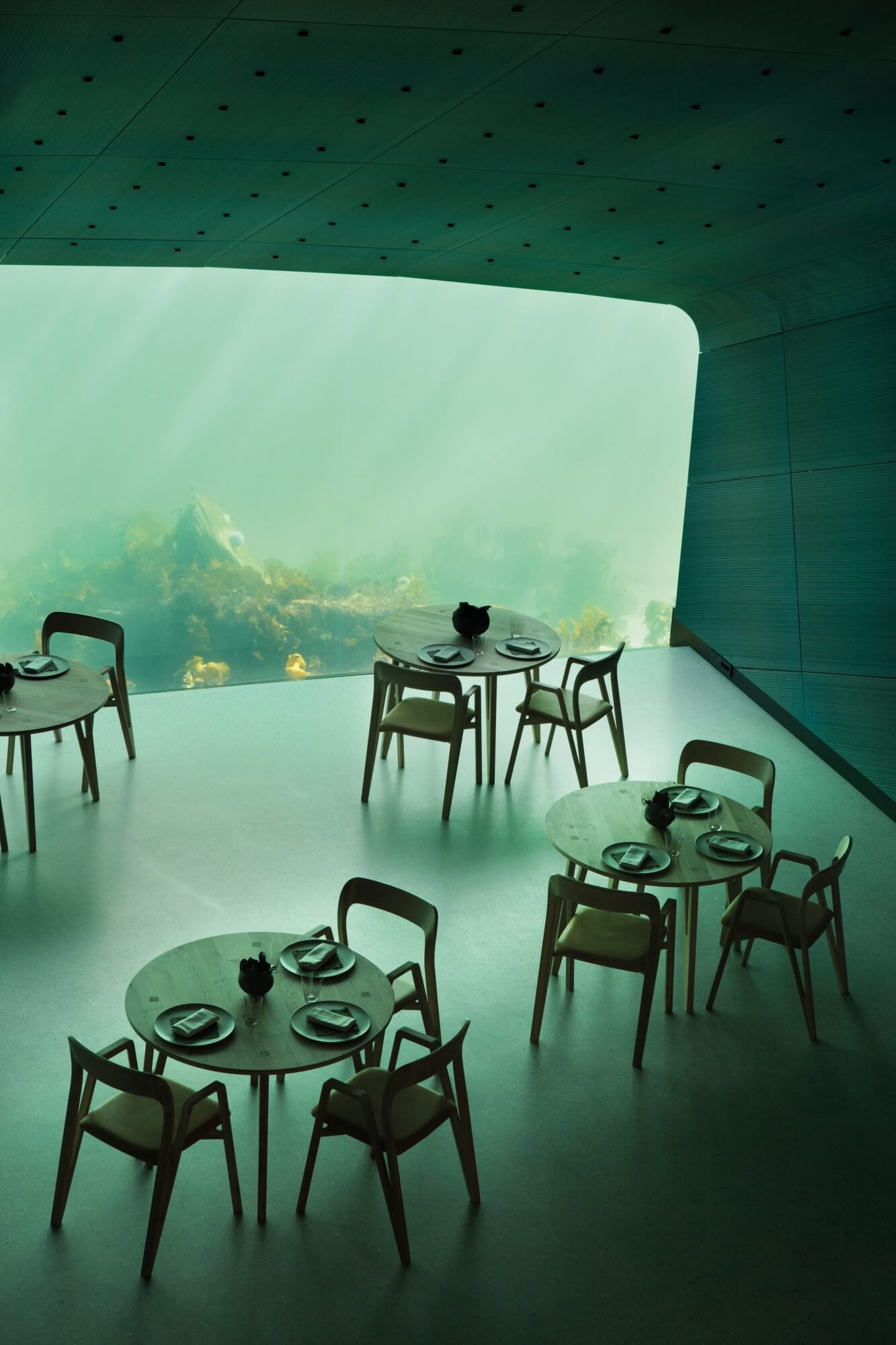 A dining room with a large glass window underwater looking into the lake.