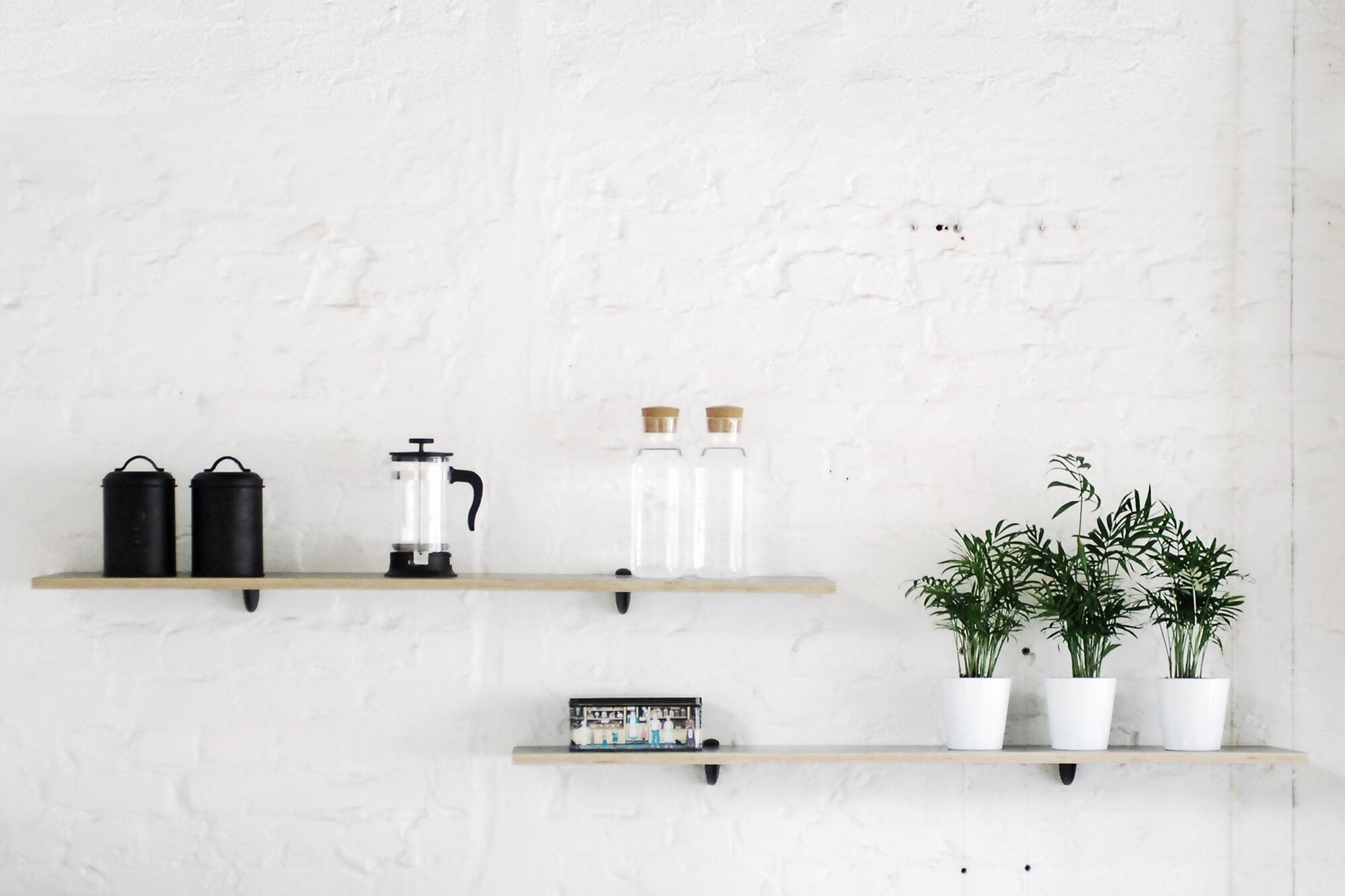 Thin wood wall shelving with white and black decor and plants.