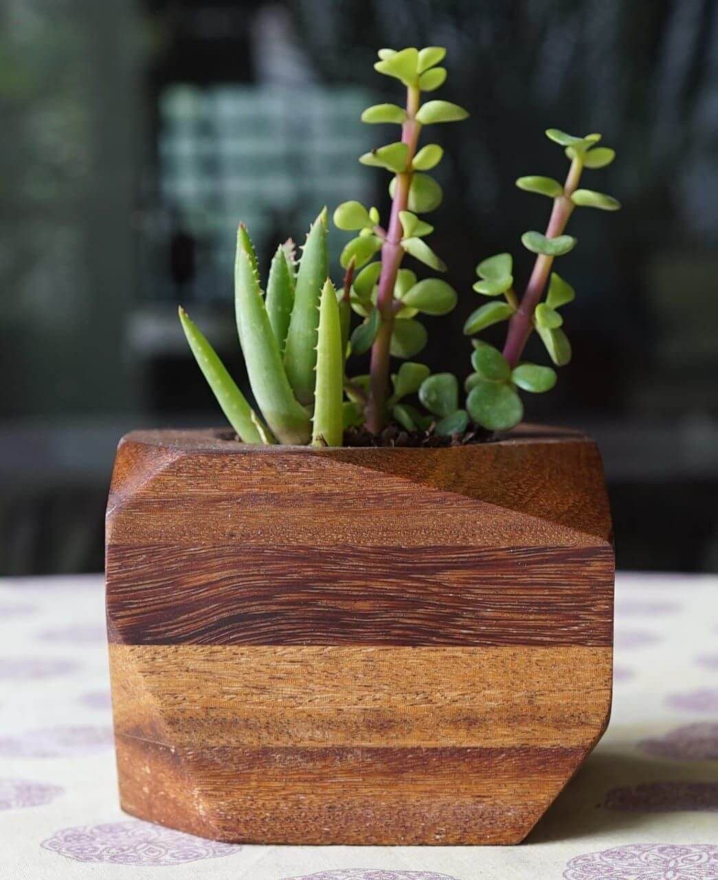 Beautiful wooden planter finished with Rubio Monocoat.
