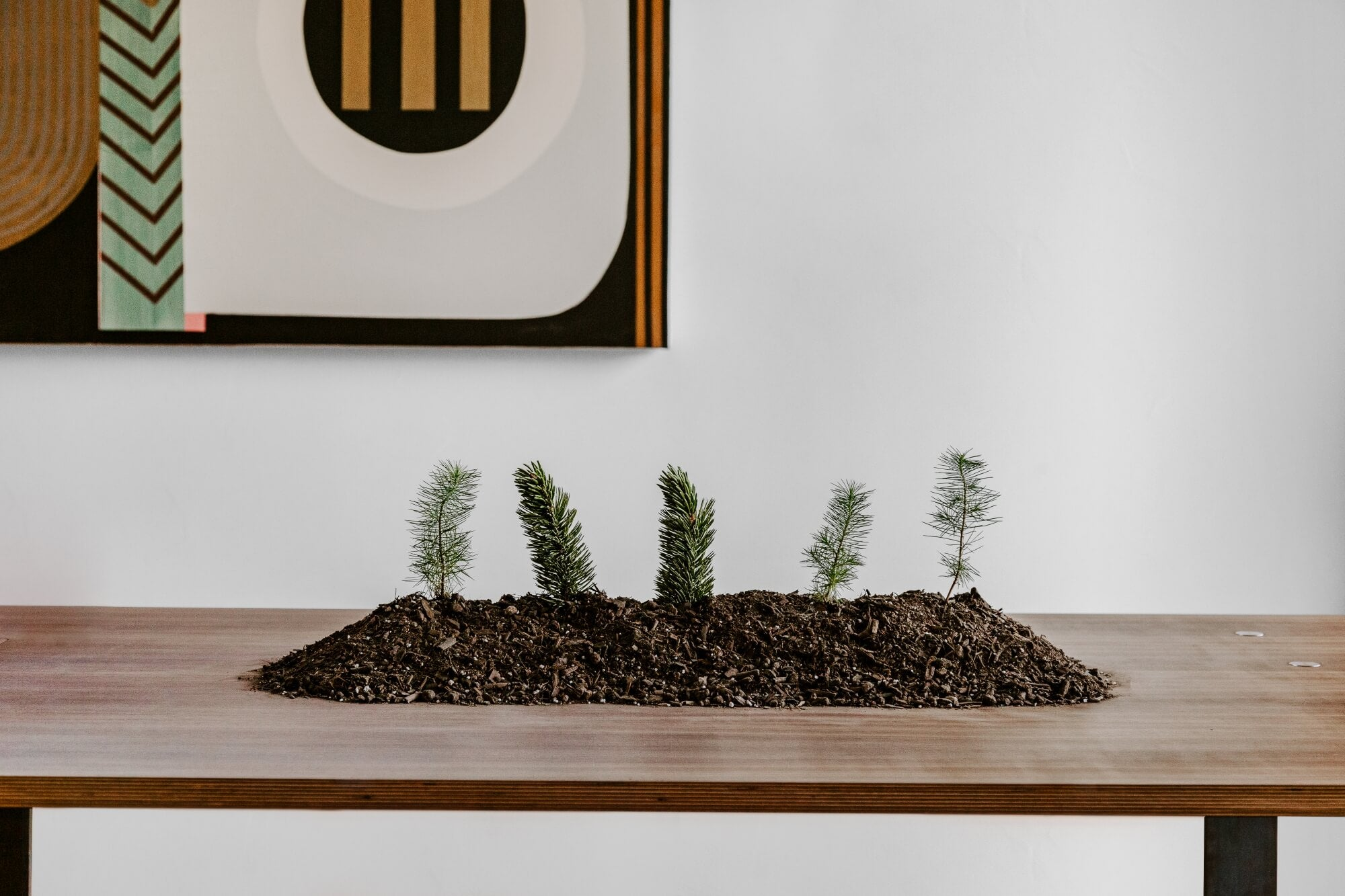 A dining table with a mount of dirt on it and mini trees sticking it.
