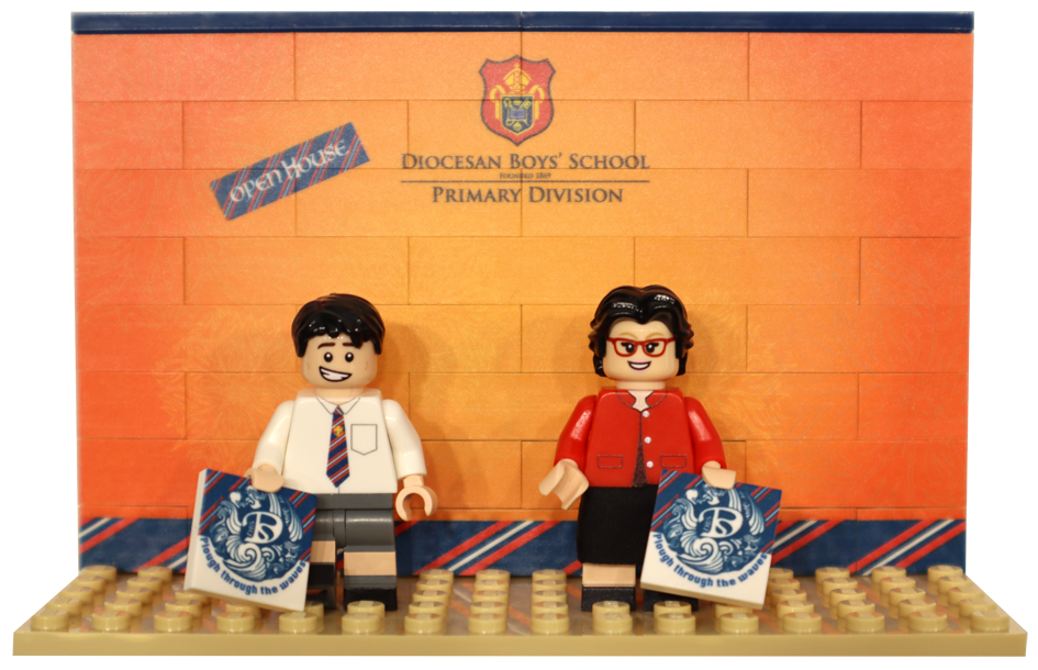 DBS Headteacher Set