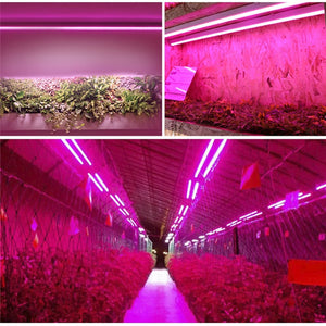 96LED Grow Light Tube Full Spectrum Indoor Plant lamp Greenhouse Double Tube