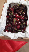 Load image into Gallery viewer, Fresh cherries from Young