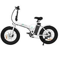 ECOTRIC Fat Tire Portable & Folding Electric Bike - White ECOTRIC